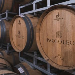 www.paololeo.it